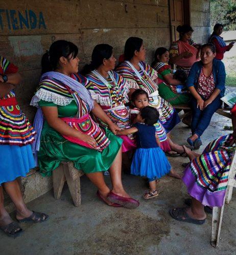 Emprendimientos Económicos (Chiapas)