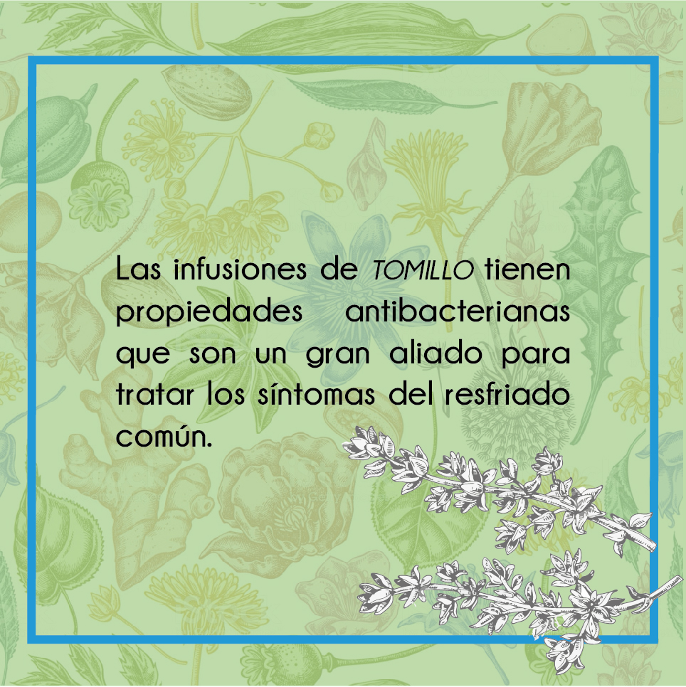 Medicina-natural-04