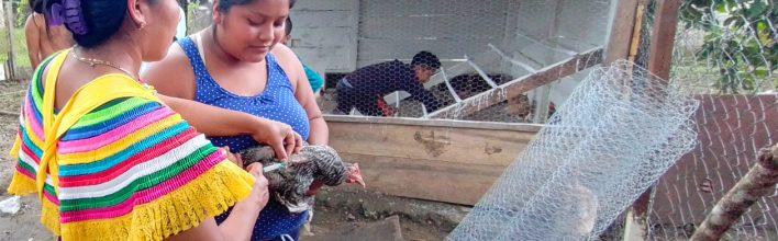3er. Encuentro formativo Metodología Campesino(a) a Campesino(a): Selección de mejoras en la crianza de aves de traspatio